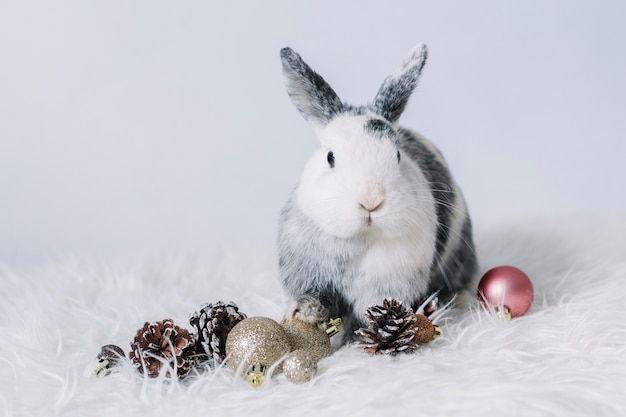 Grey rabbit with small shiny baubles