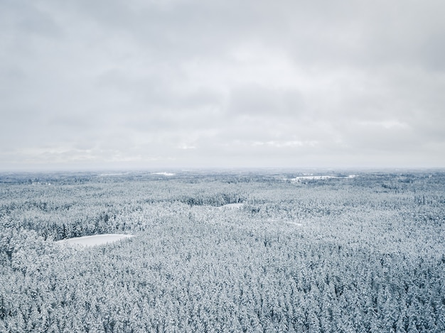 Grey sky over snow covered forest in winter - aerial photo