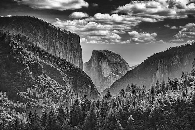 Greyscale landscape of rocks covered in greenery under a cloudy sky in the yosemite national park