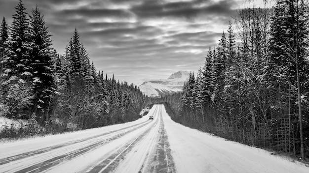 Greyscale shot of a car on a highway in the middle of a forest surrounded by snowy mountains