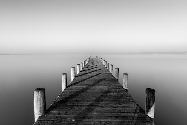 霧の背景を持つ海の近くの木造犬のグレイスケールショット