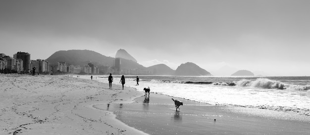 Greyscale shot of people and pets on the shore of the sea in brazil