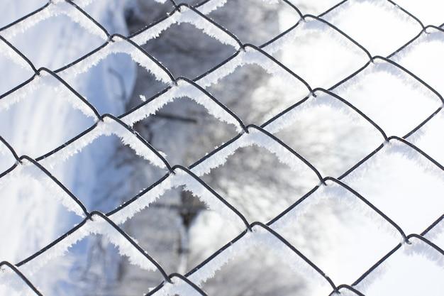 격자 사진 흰 서리로 덮인 체인 링크