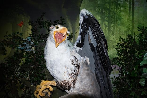 Griffin figure with open beak in the bestiary museum - saint petersburg, russia, june 2021.