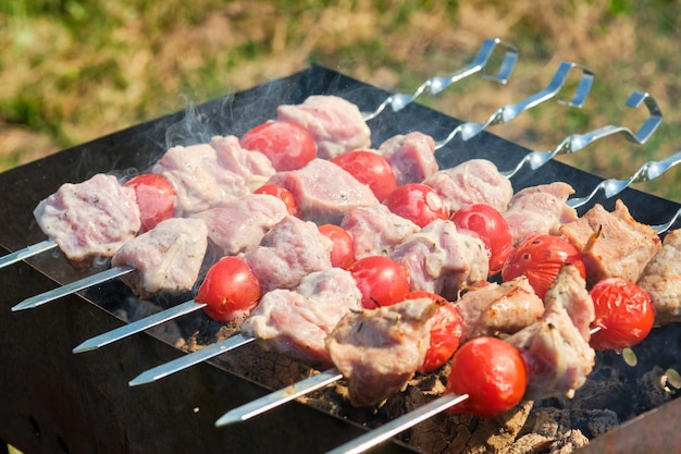 Grill skewer with meat and vegetables in nature. skewers on the grill