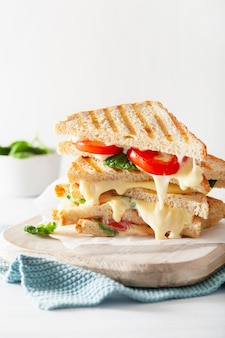 Жареный сэндвич с сыром и помидорами на белом
