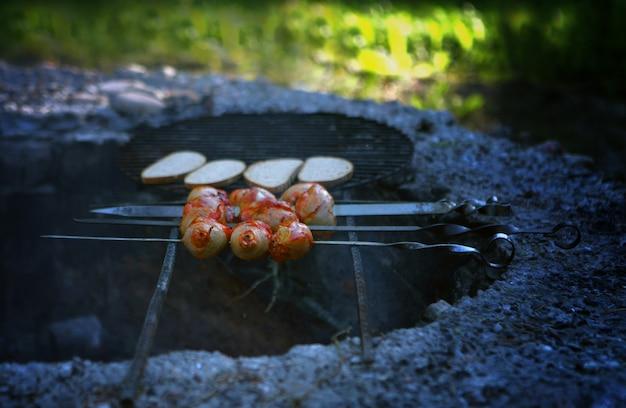 Жареный цыпленок на пикнике с щипцами в парке жареный сундук из барабанной палочки с пламенем на плите
