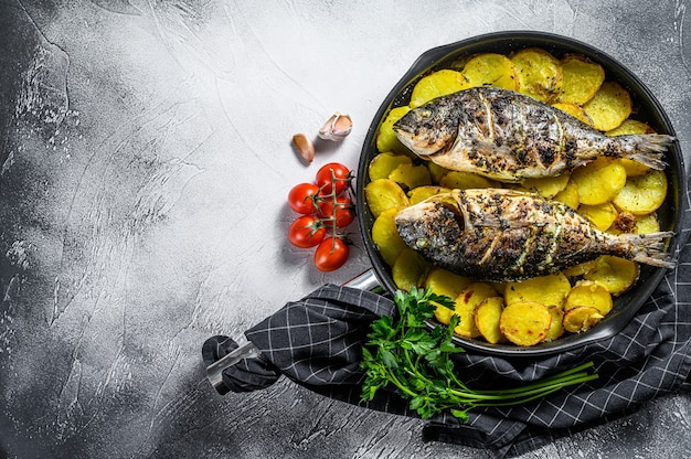 Grilled dorado fish with potatoes in a pan. gray background. top view. copy space