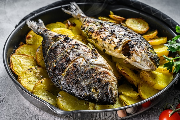 Grilled dorado fish with potatoes in a pan. gray background. top view