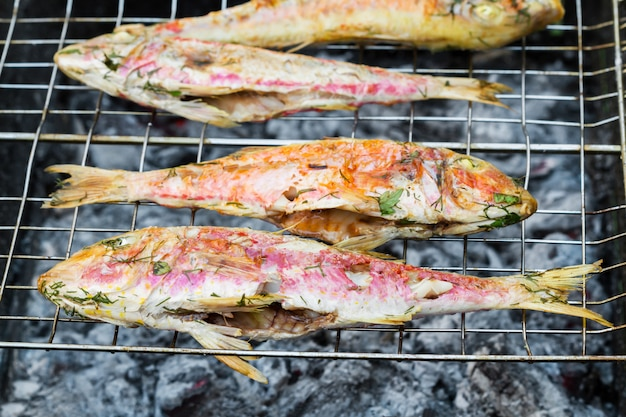 Grilled fish with spices on fire. grilling fish surmullet on campfire (bbq).