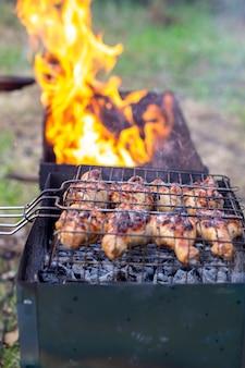 불과 석탄으로 바베큐에 구운 고기. 자연에서 튀기십시오. 1