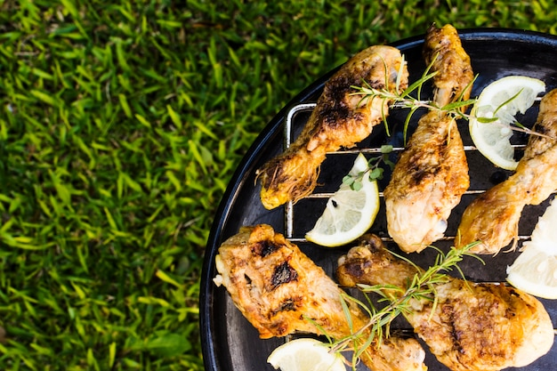 Grilled meat with rosemary and lemon on picnic