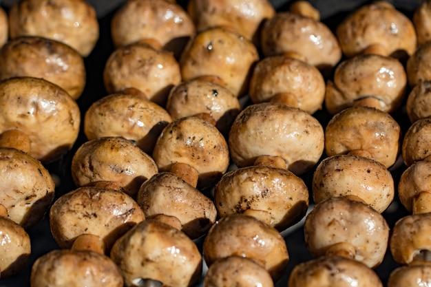 Грибы на шампурах, приготовленные на мангале, крупный план.