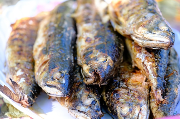 Grilled spicy mackerel fish on a dish. roasted fish. grilled fish on the grill