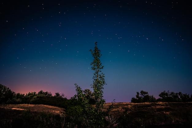 Мрачная степная панорама с удивительными фигурными стартовыми рельсами на рассвете