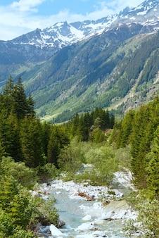 증기와 전나무 나무 (스위스, 베른 알프스)와 그림 셀 패스 여름 풍경.