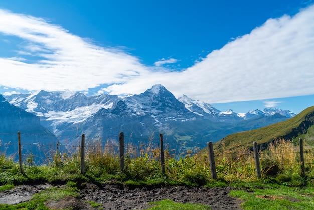 스위스에서 알프스 산 그린 델 발트 마