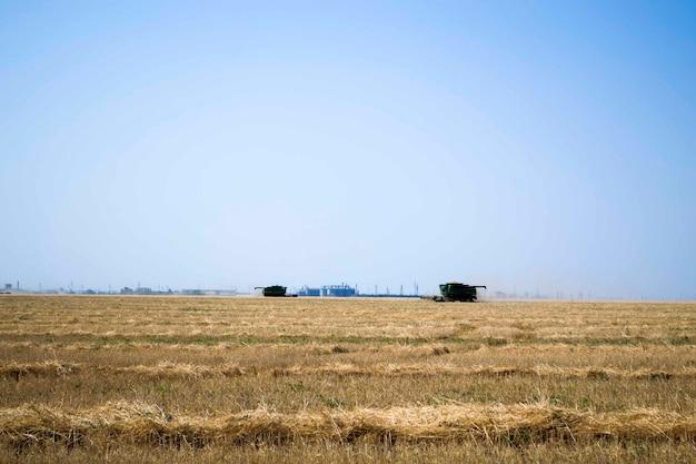 Промышленный промышленный пейзаж с комбайнами, собирающими сено на рапсовом поле на солнышке