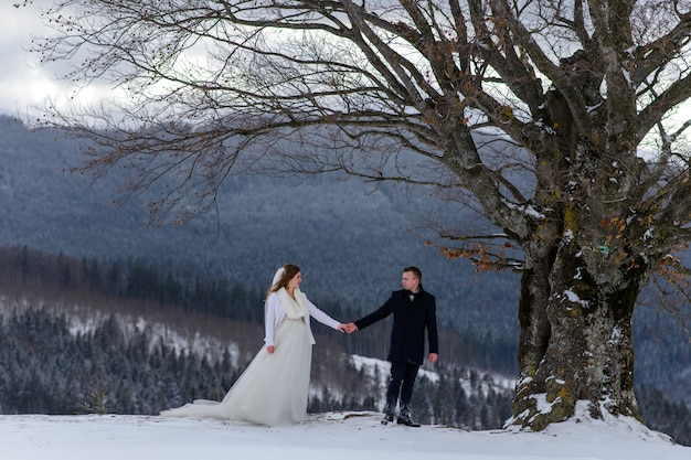 The groom leads his bride by the hand to a lonely old beech. winter wedding. place for a logo.