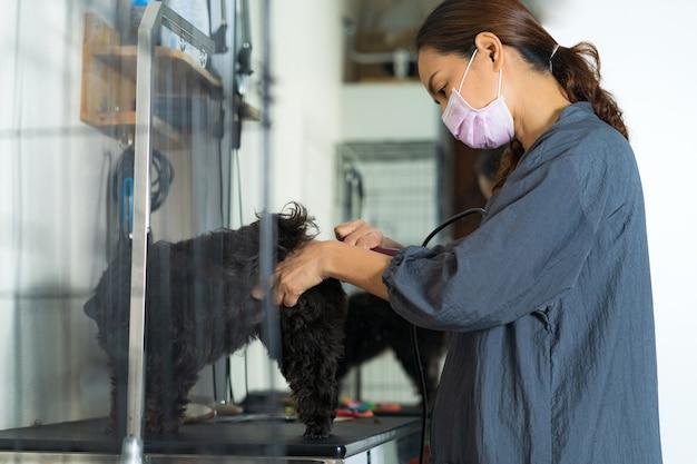 犬のための美容院のサロンで小さな犬の女性groomer切断髪