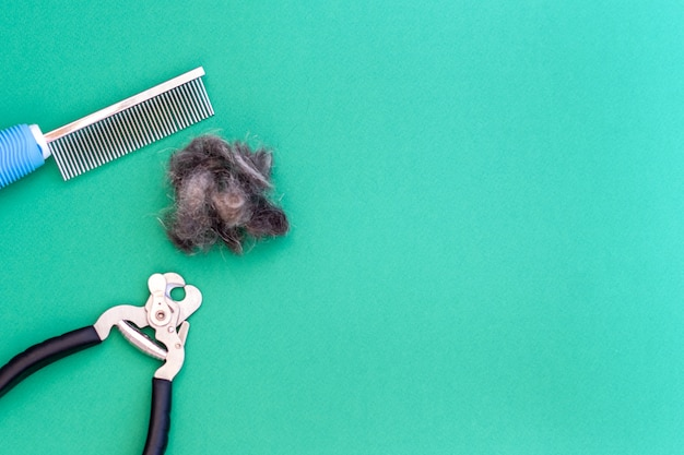 Grooming tools comb, scissors for nails and a piece of pet hair, flat lay. space for text. grooming concept.