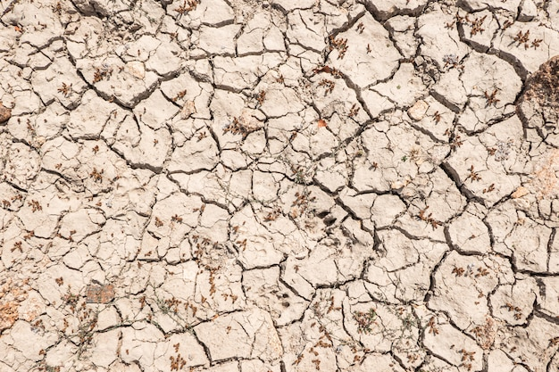 Ground cracked by drought