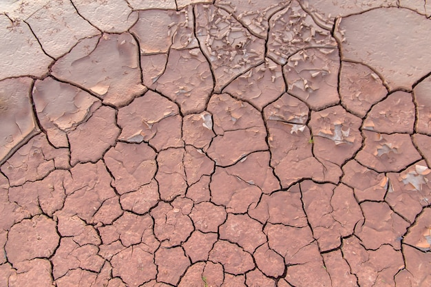 Ground in drought