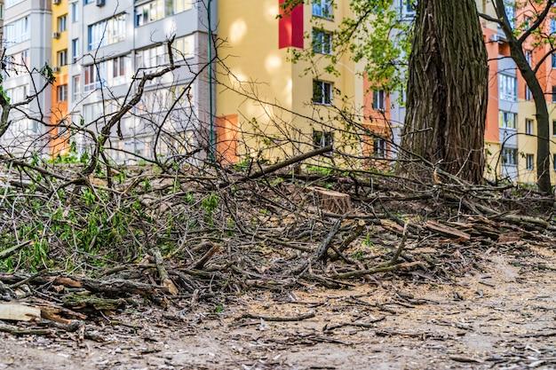 Земля сушеные листья и текстура палочек. строительный фон.