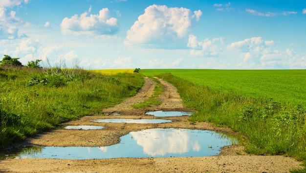 雲が表示されている水たまりのあるフィールドの地上道路