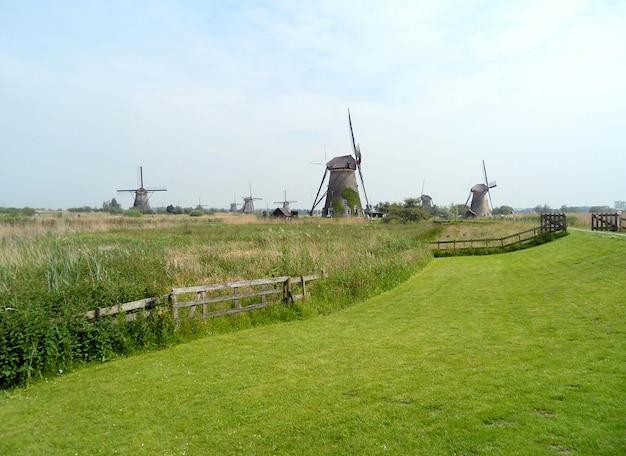 Group of authentic dutch windmills in kinderdijk,  in netherlands