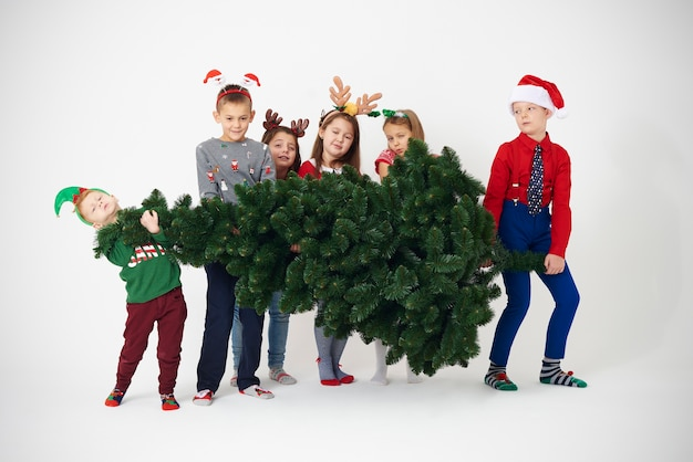 Group of children try to lift christmas tree