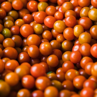 Group of fresh juicy cherry tomato for sale