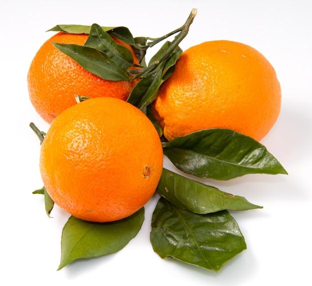 Group of fresh orange fruit