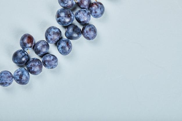 Gruppo di prugne fresche sull'azzurro.