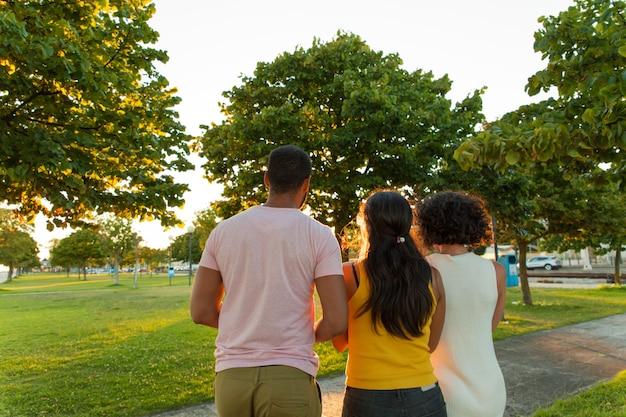 Group of friends enjoying sunset in park