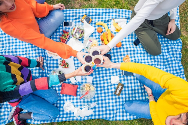 Group of friends multiethnic toasting having picnic outdoor
