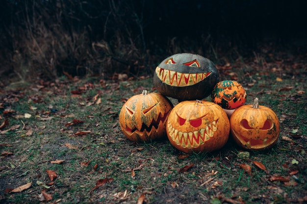 Group of halloween pumpkins