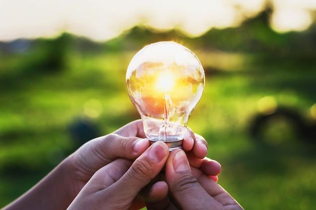 그룹 손 일몰 전구를 들고입니다. 개념 아이디어 태양 에너지