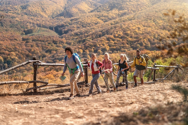 Group of hikers walking in row and exploring nature. autumn time.