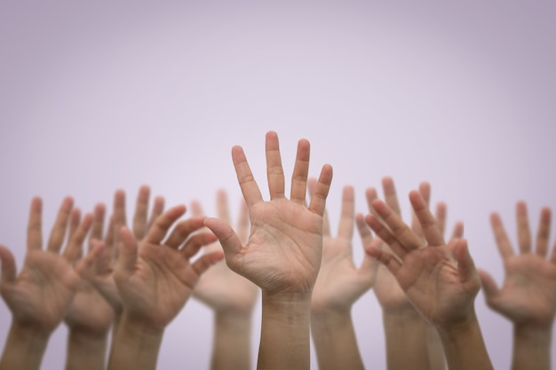 Group of human hands raised high up on pink
