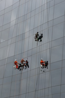 Group of industrial climbers cleaning windows service on high rise building.