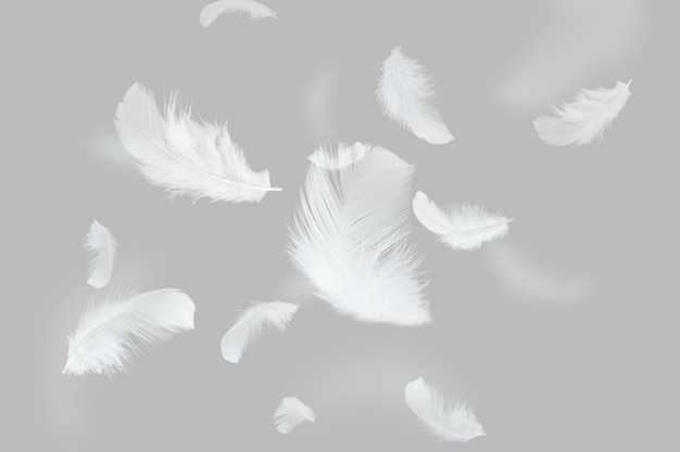 Group of light a white feathers floating in the air