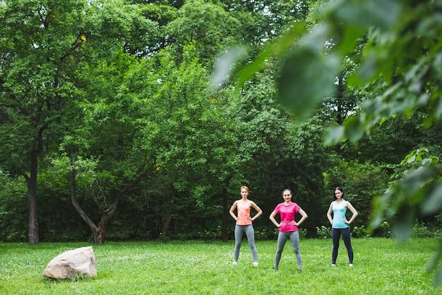 緑の夏の森で屋外のヨガスポーツクラスをやっている美しい笑顔の女の子のグループ