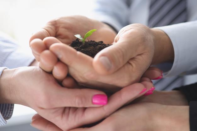Группа деловых людей, держащих землю с маленьким зеленым растением в руках крупным планом