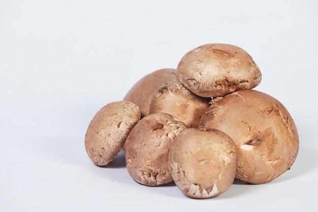 シャンピニオンキノコのグループ、茶色の品種、白い背景で隔離。