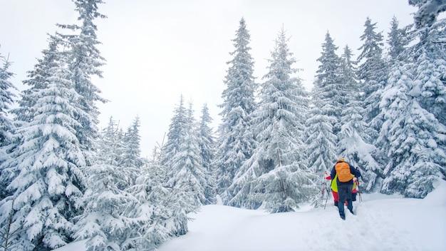 Группа альпинистов, прогулки по тропе в горах зимой