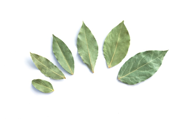 白い上面図で分離された乾燥した月桂樹の葉または月桂樹のグループ