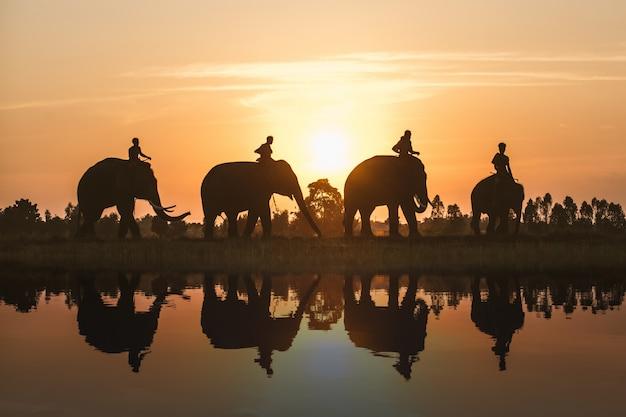 タイで象を持つ農民のグループ