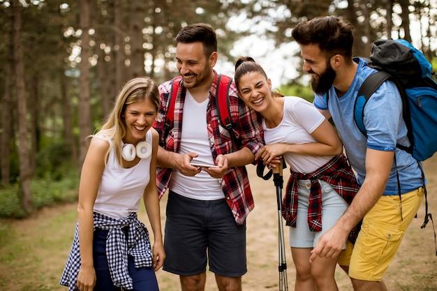 森を一緒にハイキングする4人の友人のグループ