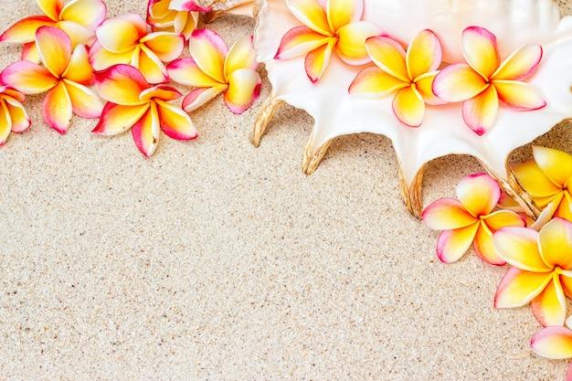 Группа в составе свежие розовые и желтые цветки frangipani или plumeria на песке с космосом экземпляра, предпосылкой взгляд сверху